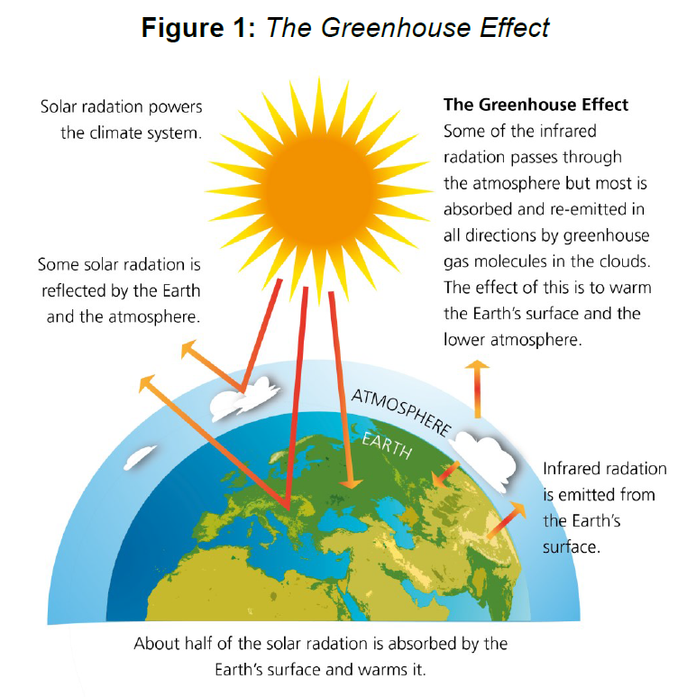 A graphic representation showing 'The Greenhouse Effect'. There is a diagram of the earth, surrounded by a layer of atmosphere and clouds with an orange sun image above both. There are arrows indicating that some solar radiation is reflected by the earth and the atmosphere; about half of the solar radiation is absorbed by the earth's surface and warms it and some infrared radiation is shown as being emitted from the earth's surface.